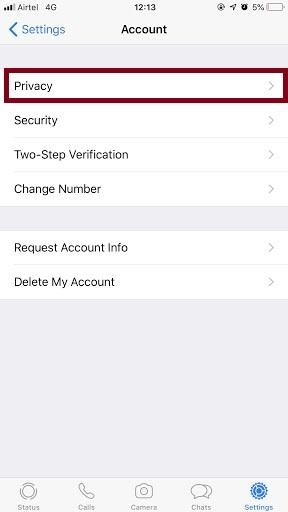 change status privacy on iphone
