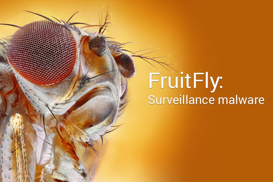 What is FruitFly,