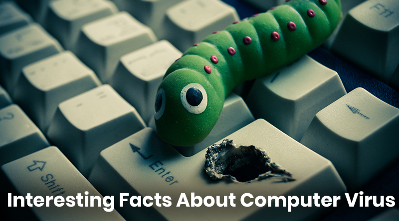 computer virus facts