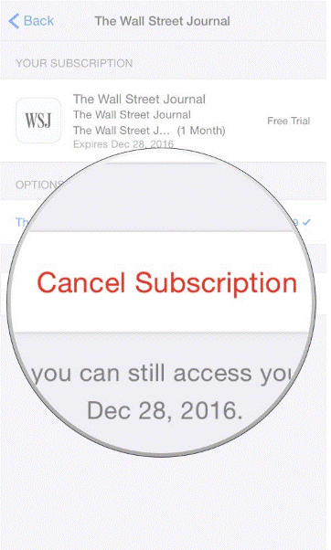 Cancel Subscription