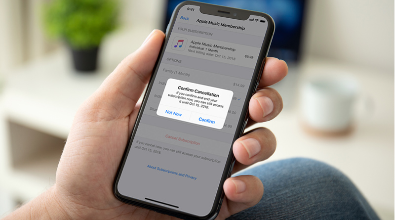 How To Cancel An App Subscription On iPhone - Tweaklibrary