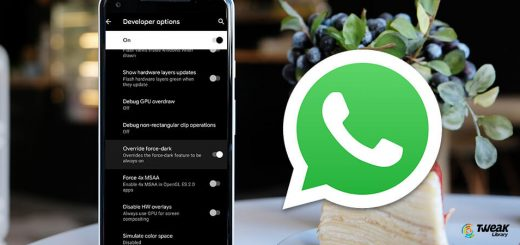 Enable Dark Mode On WhatsApp on Android and iOS Devices