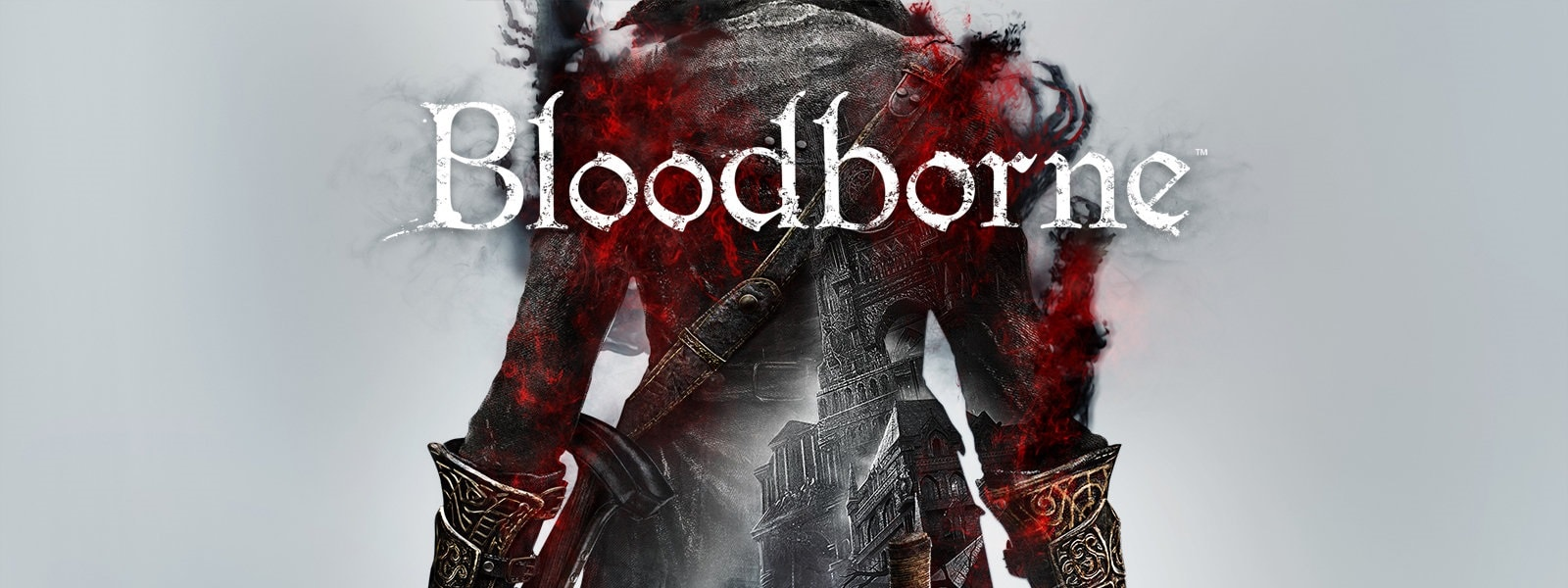 Bloodborne - Single player games