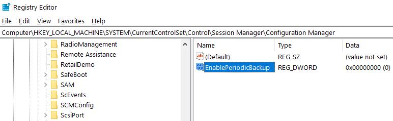 Set Key Name As EnablePeriodicBackup