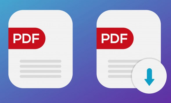 What is PDF
