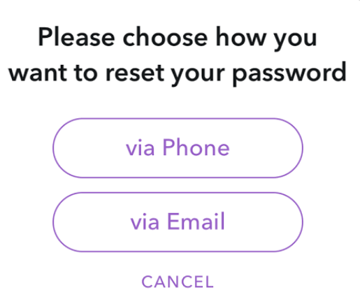 Choose option to reset snapchat password